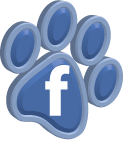 Facebook_s1