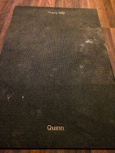 This is QUinn's old Thank Dog Mat. I haven't cleaned it since the last time it was used by her. It's just a little dried mud, that's all. :)