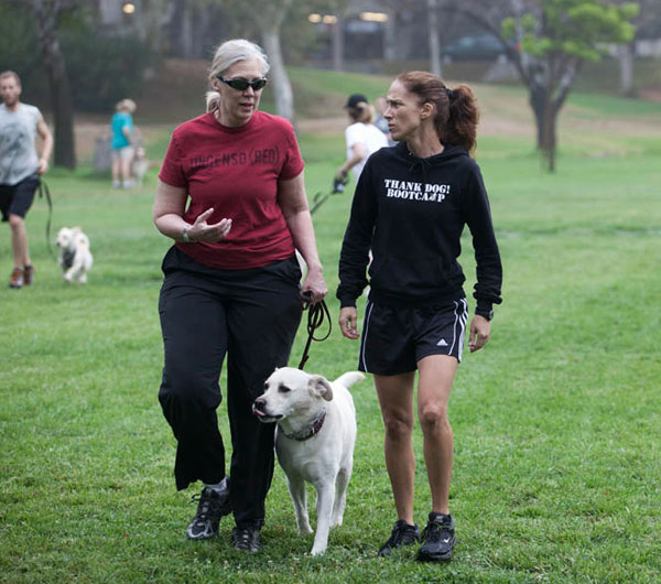 """""""Sometimes"""" is ruining your dog's training!"""