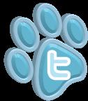 Twitter_s1