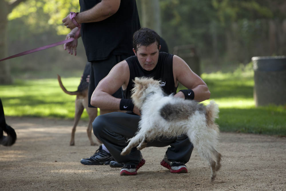 Working out with your dog: built-in social support